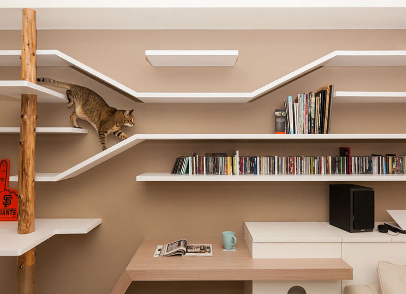 Cat Friendly Custom Bookshelves by Thinking Design